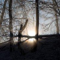 На закате :: Астарта Драгнил