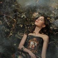 Сновидение :: Мария Сендерова