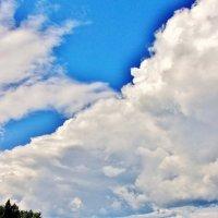 Небо над озером :: Leonid Tabakov