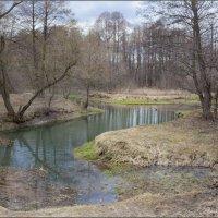 Весна в Кузьминках :: Игорь Овсянников