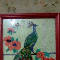 """""""Птица счастья"""" (вышивка крестиком). :: Светлана Калмыкова"""