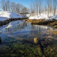 Конец зимы! :: Борис Кононов