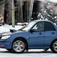 Subaru Mini  WRX STI :: derber d