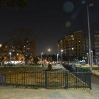 Израиль. Ночной Бат Ям :: Ефим Хашкес