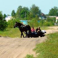 сельская дорога :: Леонид Натапов