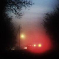 Ночь на деревенской дороге :: Андрей Михайлин
