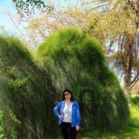 весь покрытый зеленью.... :: ALEX KHAZAN