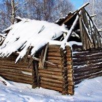 Судьбы последняя зима... :: Лесо-Вед (Баранов)