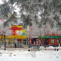 Зима в городе. :: Elena Izotova