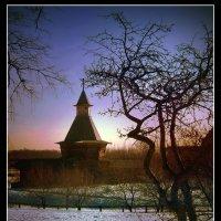 Кончается февраль... :: Nikanor
