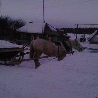 Сумерки в деревне :: Владимир Ростовский