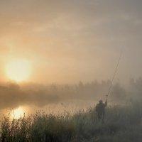 Ловец солнце :: евгений савельев