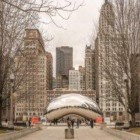 Чикаго в феврале :: Лёша
