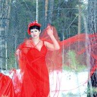 Весна :: Оксана Я