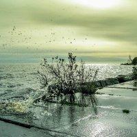 Перед штормом, а может после.. :: Валерий Смирнов