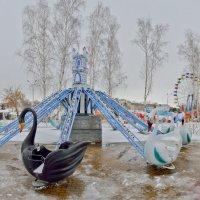 """Сказ о том как белые лебеди дружили с черным (???), или """"Лебединое озеро"""" :: Petr Popov"""