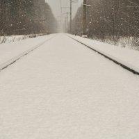Куда уходят поезда.. :: missis.litsis Елена