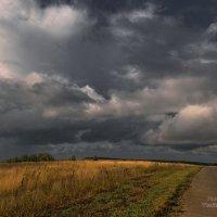 Земные дожди :: Владимир Макаров