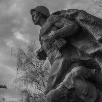 за Сталинград :: Иван Синицарь