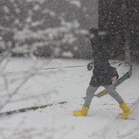 Ах, эти желтые ботинки! :: Наталья