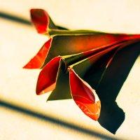 Оригами :: Ольга