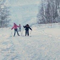 Борьба на лыжне :: Валерий Талашов