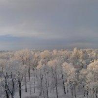 Царское село зима. :: Харис Шахмаметьев