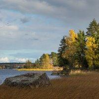 Осень :: Владимир Колесников