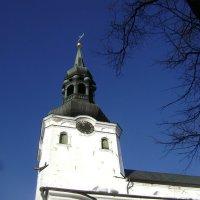Домский собор Таллина :: Марина Домосилецкая