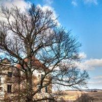 Старый замок :: Алексей Романенко
