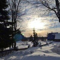 Ласка февральского солнца :: Николай Туркин