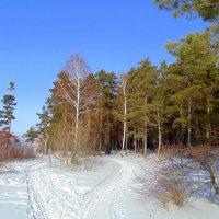 Две дороги , два пути. :: Мила Бовкун