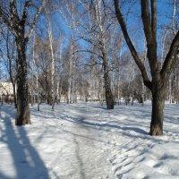 В парке1 :: Александр Подгорный