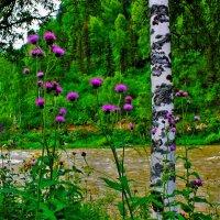 На берегу жёлтой реки :: Сергей Чиняев