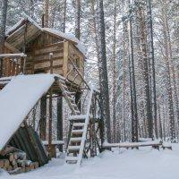 У леса на опушке, жила Зима в избушке :: Алёна Барковская
