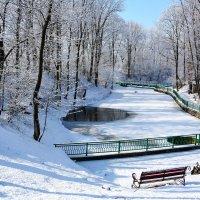 Зимний пруд :: Paparazzi