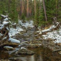 Первый снег :: vladimir