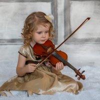 Прикосновение к прекрасному :: Ольга Палей
