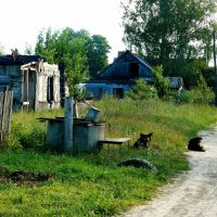 старый колодец :: Леонид Натапов