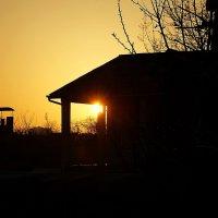 солнечное весеннее утро :: Александр Корчемный