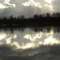 плывущие по льду :: prokyl