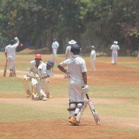 крикет :: maikl falkon