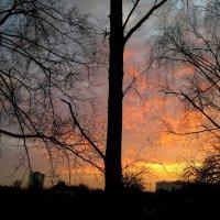 закат за моим окном :: Александр Прокудин