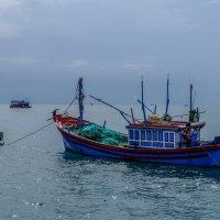 Сиеста в Южно-Китайском море. :: Rafael