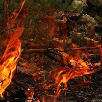 Огненные пляски :: Светлана