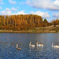 Ст.Изборск.Городищенское озеро... :: Mari Kush