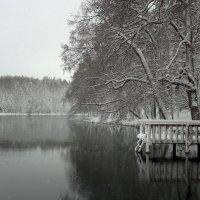 Настоящая зима цвет :: Sony 2 Sony 2