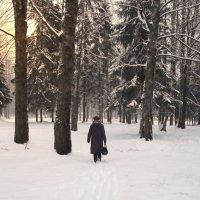 Прогулка :: Владимир Рязанов