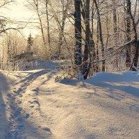 Зимние картинки 1 :: Валерий Талашов
