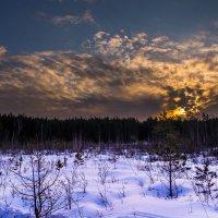 последний вечер зимы.. :: Светлана